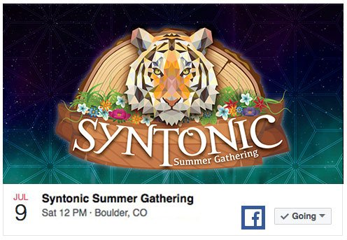 family-moons-syntonic-summer-gethering-facebook-event-post